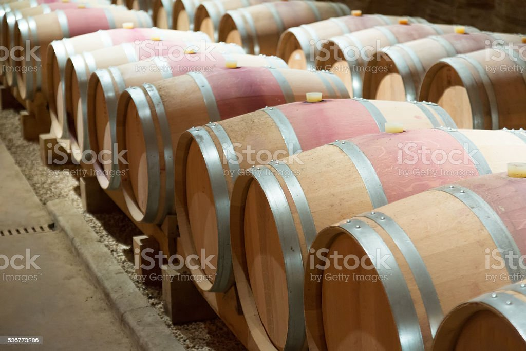 french winery with   barrels stock photo