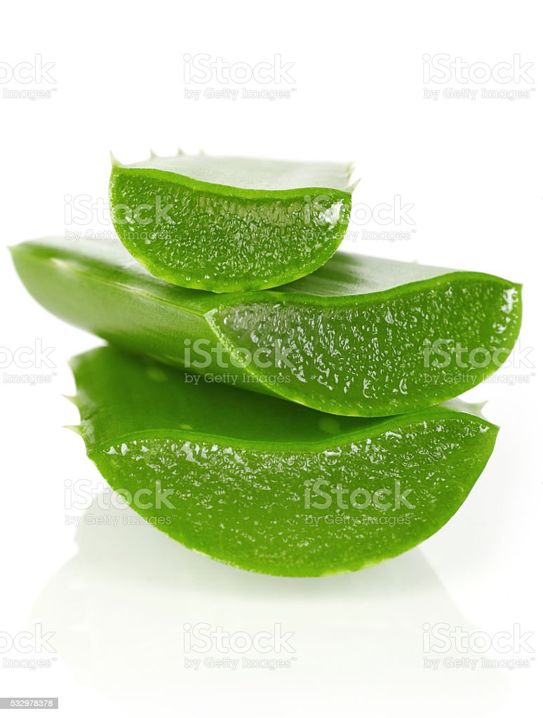 Fresh aloe vera stock photo