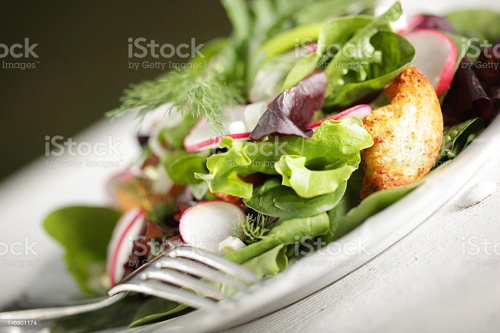 Fresh and bright salad royalty-free stock photo