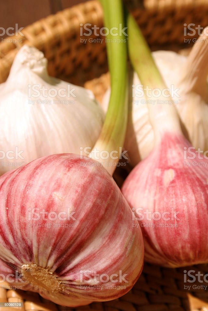 Fresh and Dried Garlic stock photo