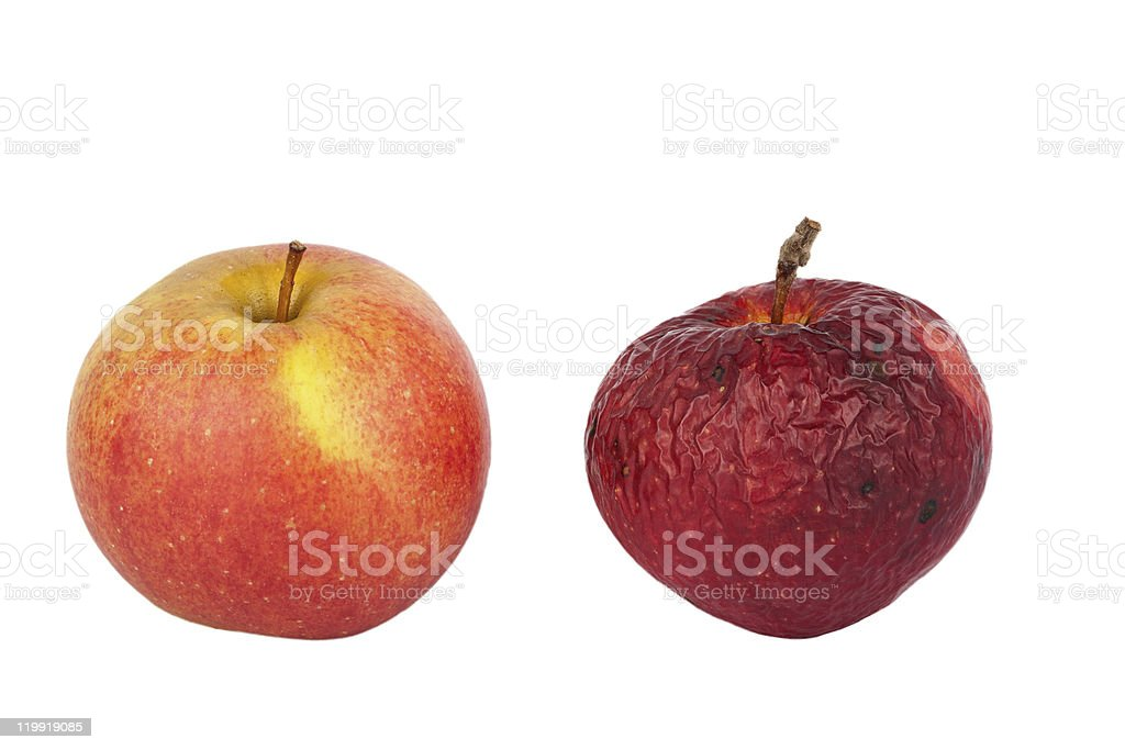 Fresh and old apple stock photo