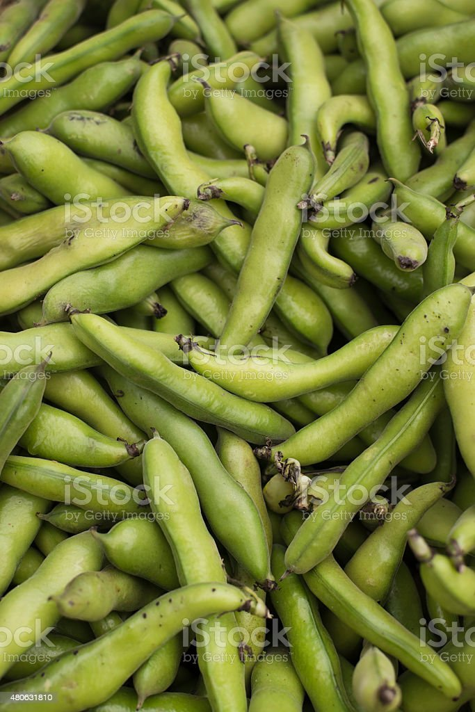 fresh and organic fava beans at farmers market stock photo
