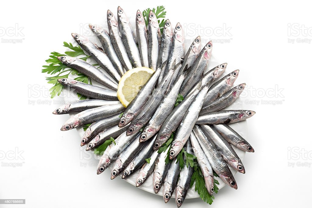 Fresh and raw mediterranean anchovy. Overhead view stock photo