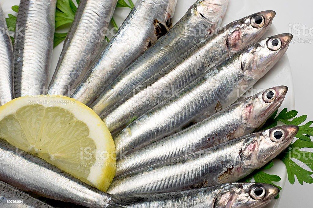 Espanhol de frutos frescos e anchova close-up foto royalty-free