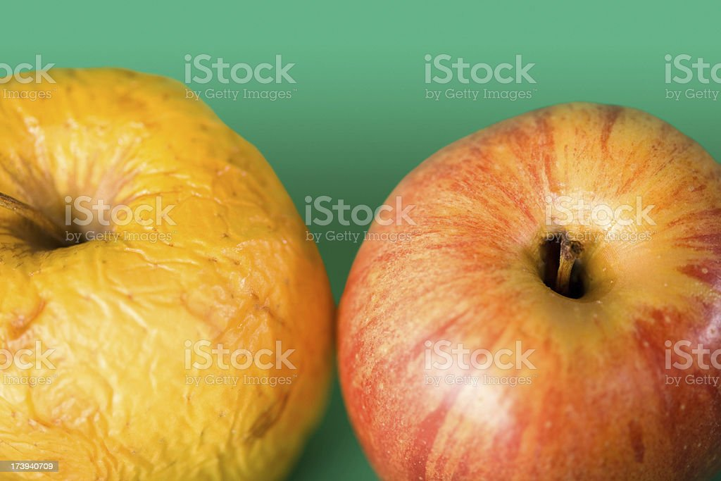 Fresh and rotten apples royalty-free stock photo
