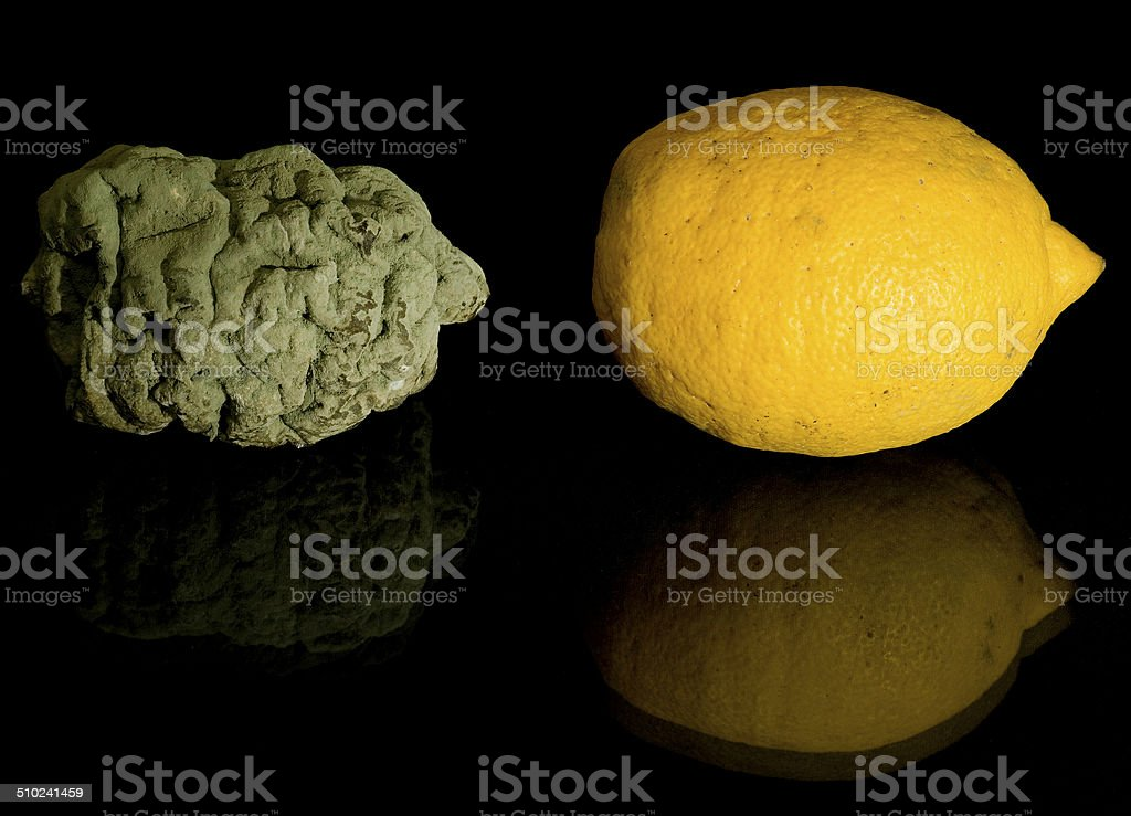 Fresh and rotten lemons royalty-free stock photo