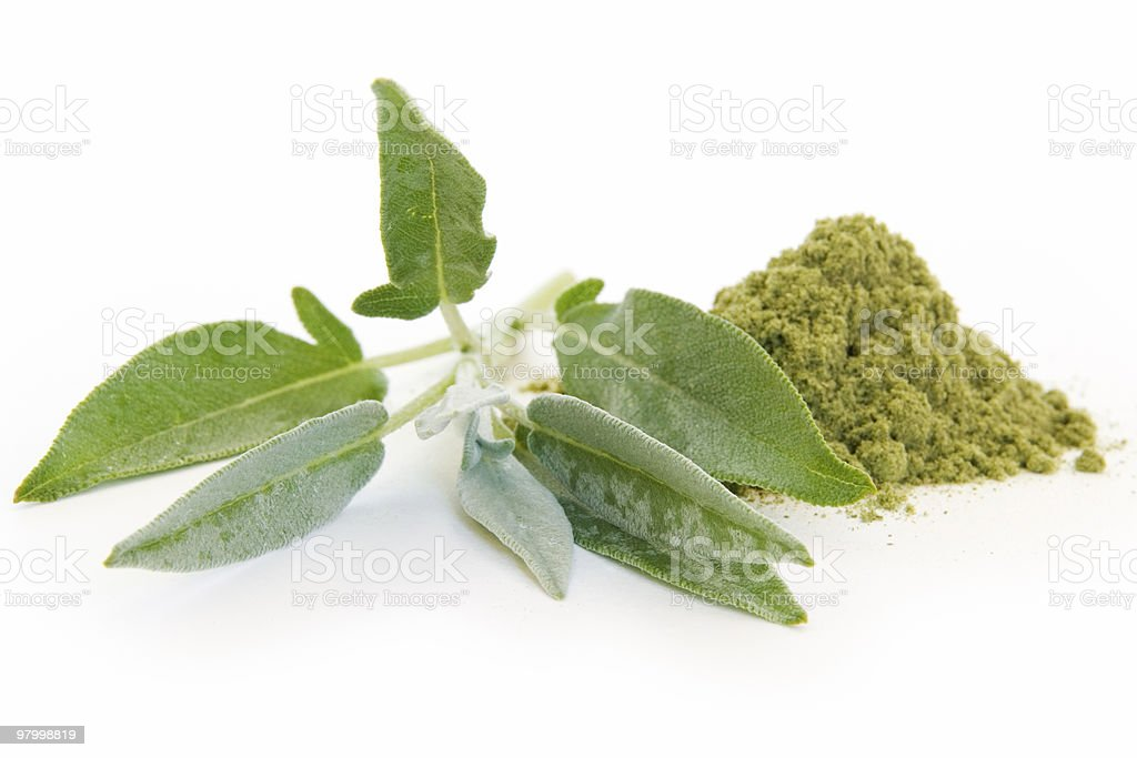 Fresh and rubbed sage on white stock photo