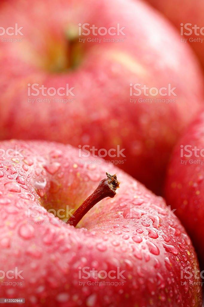 Fresh apple Close-up stock photo