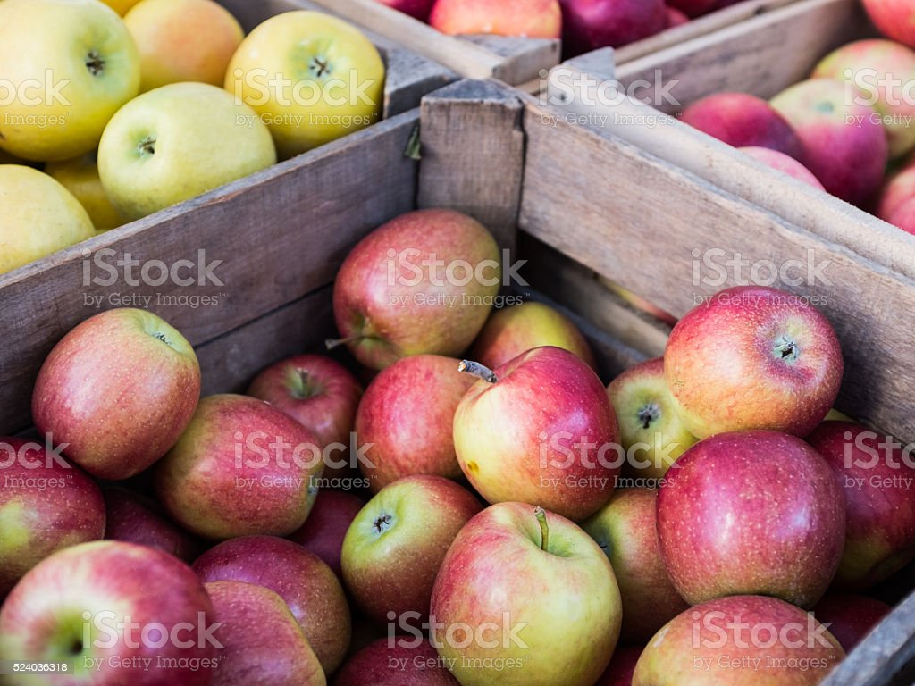 Fresh apple varieties for sale at a market stock photo