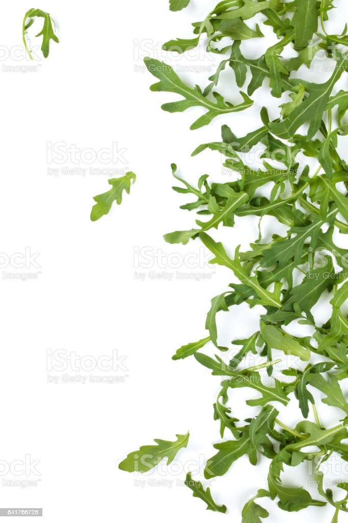 Fresh arugula leaves. stock photo