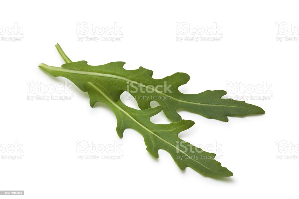 Fresh Rucola. stock photo