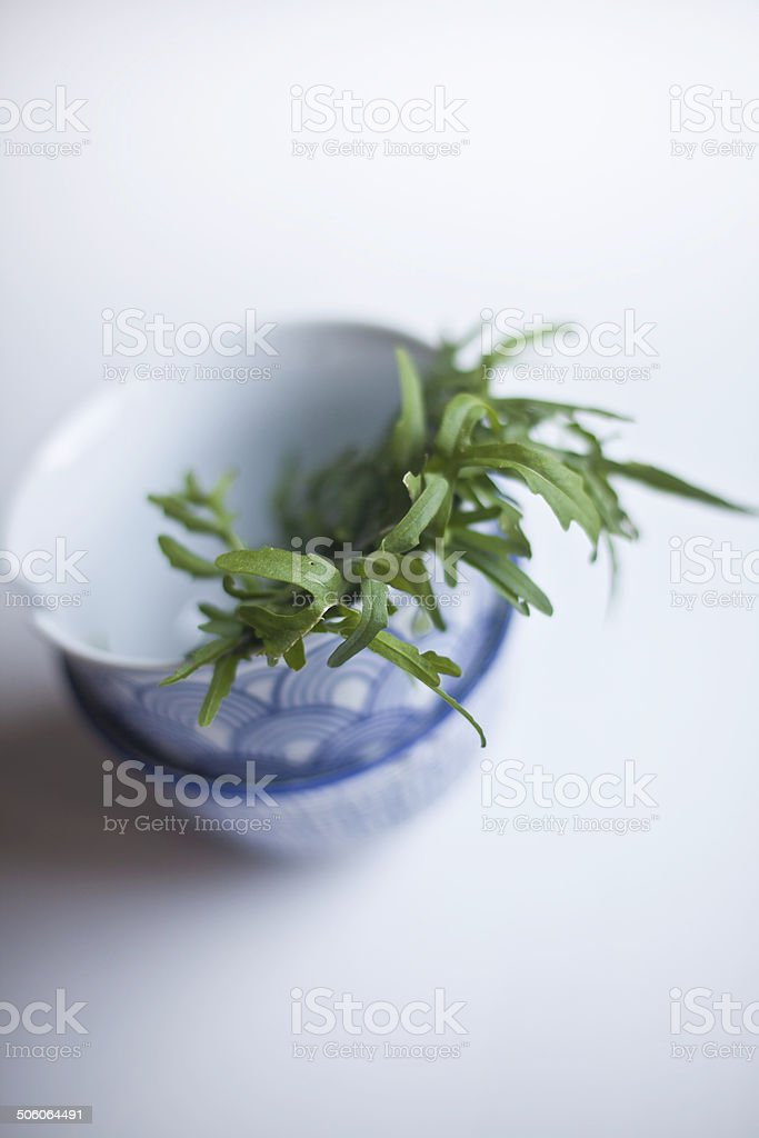 Fresh Arugula royalty-free stock photo