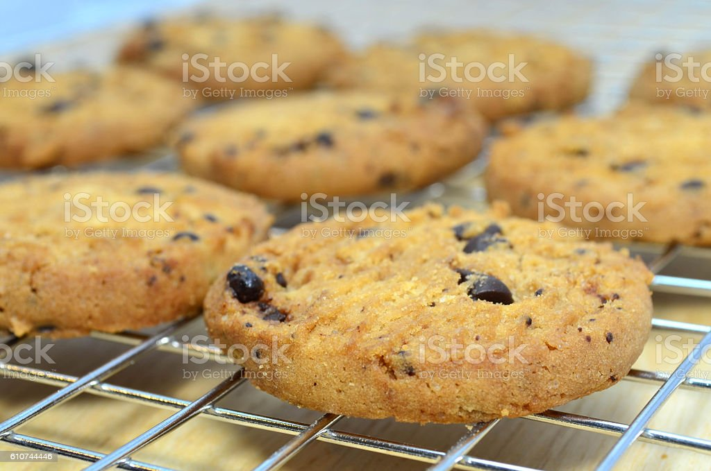 Fresh baked homemade chocolate chips cookies from oven stock photo