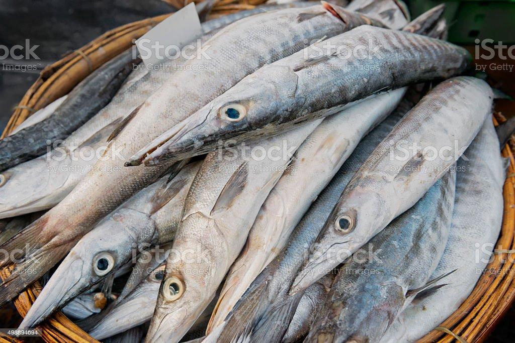 Fresh Barracuda at the Long Hai Fish Market stock photo