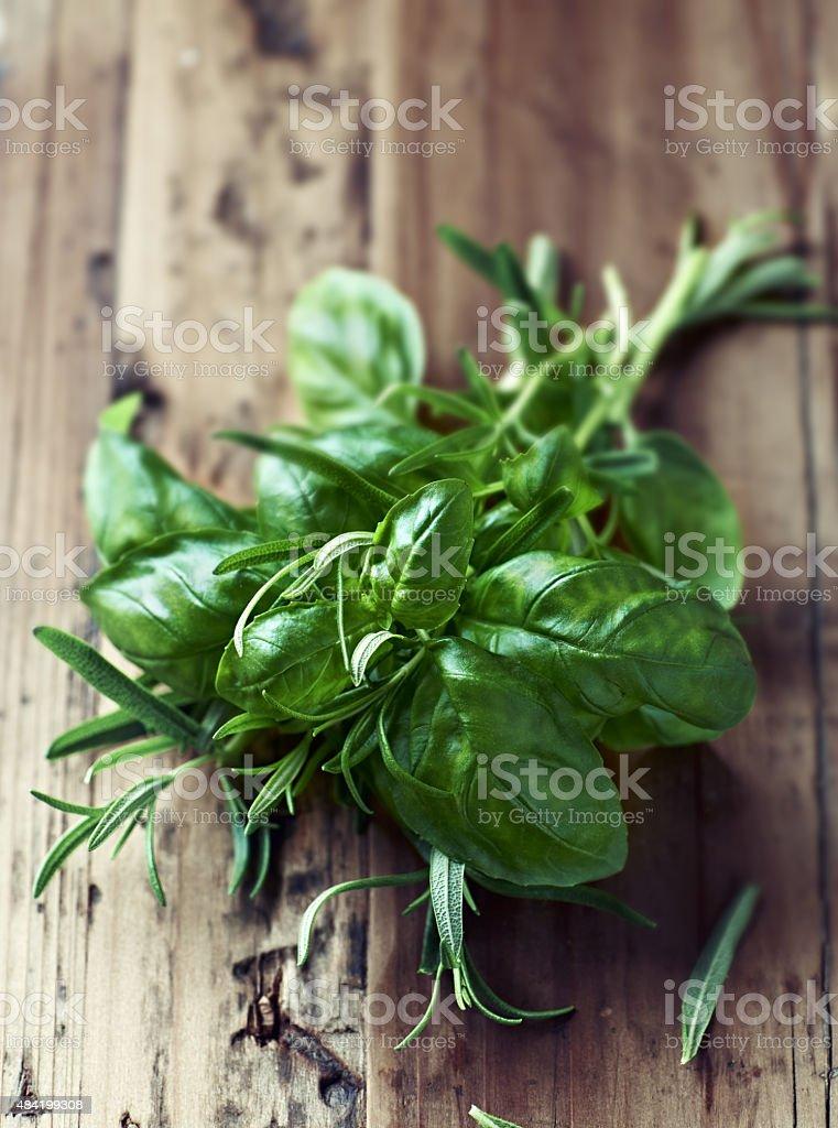 Fresh basil and rosemary stock photo