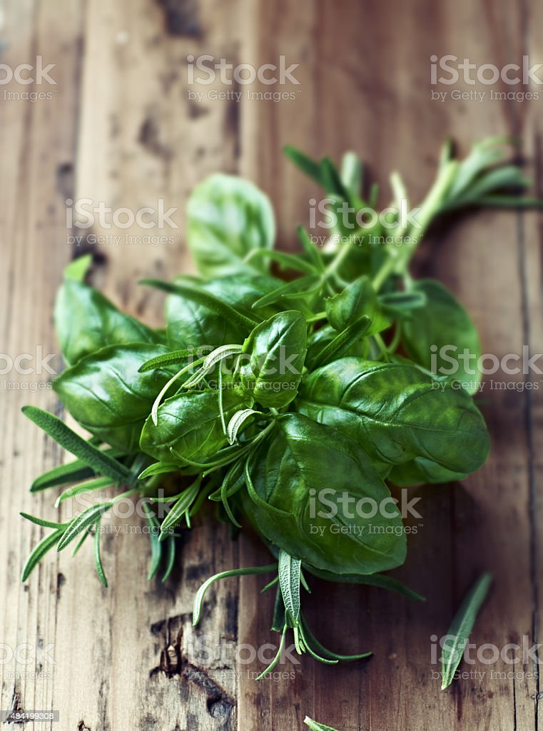 Fresh basil and rosemary stock photo