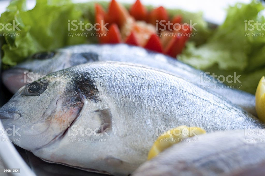 fresh bass royalty-free stock photo