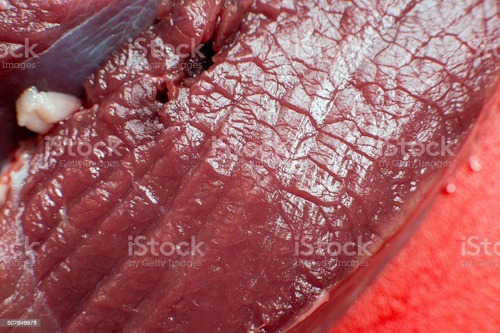fresh beef piece in closeup stock photo