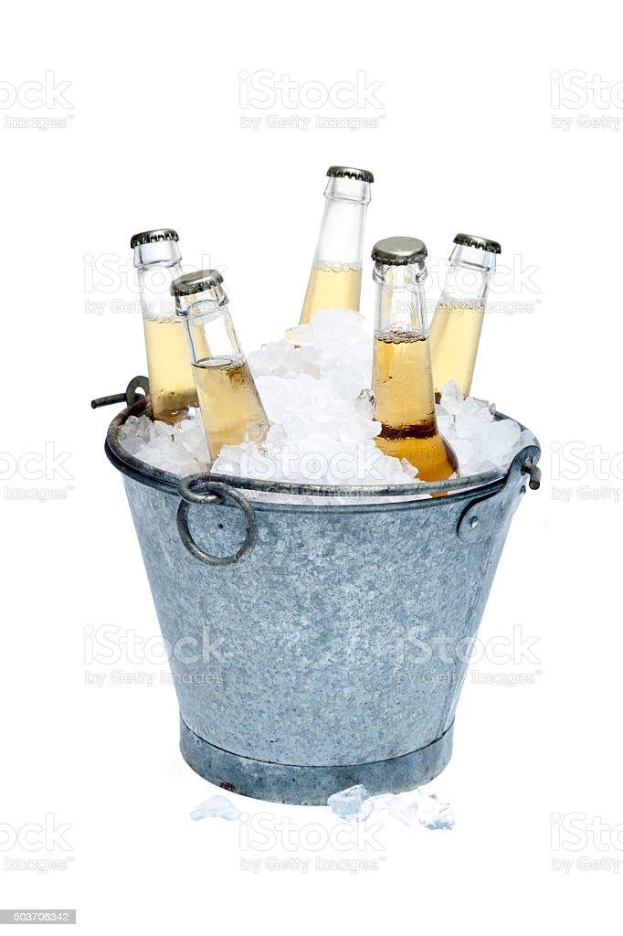 Fresh beer bottles stock photo
