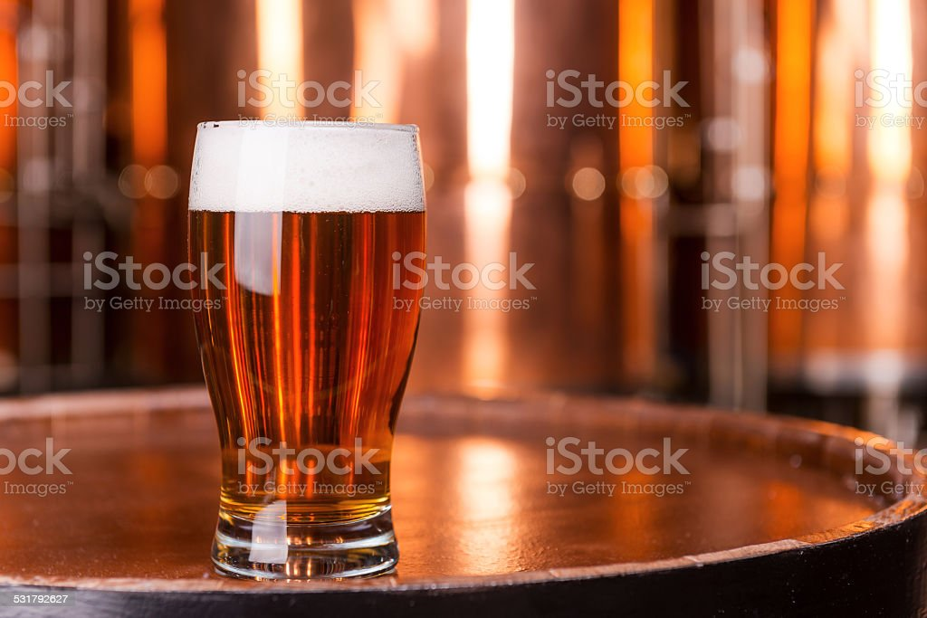 Fresh beer. stock photo