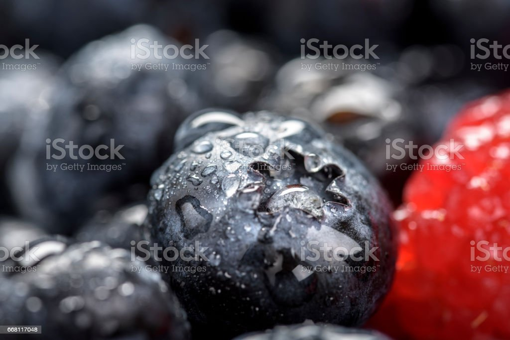 Fresh Berries close up stock photo