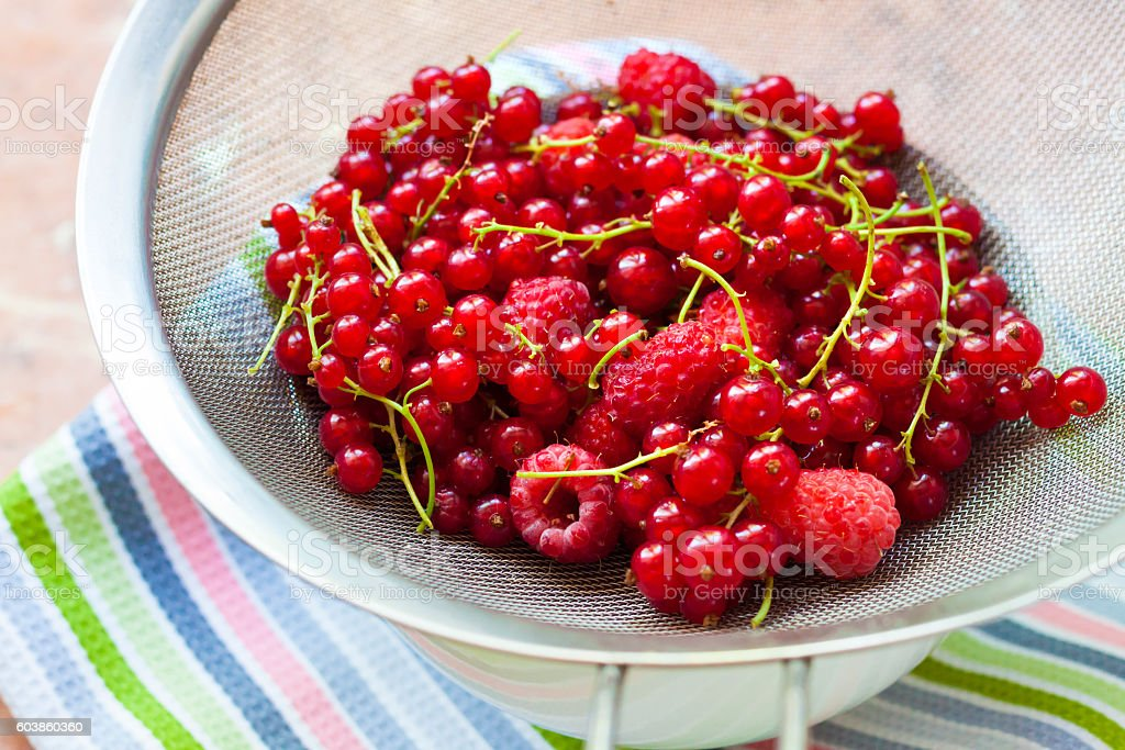 Fresh berries in a sieve stock photo