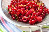 Fresh berries in a sieve