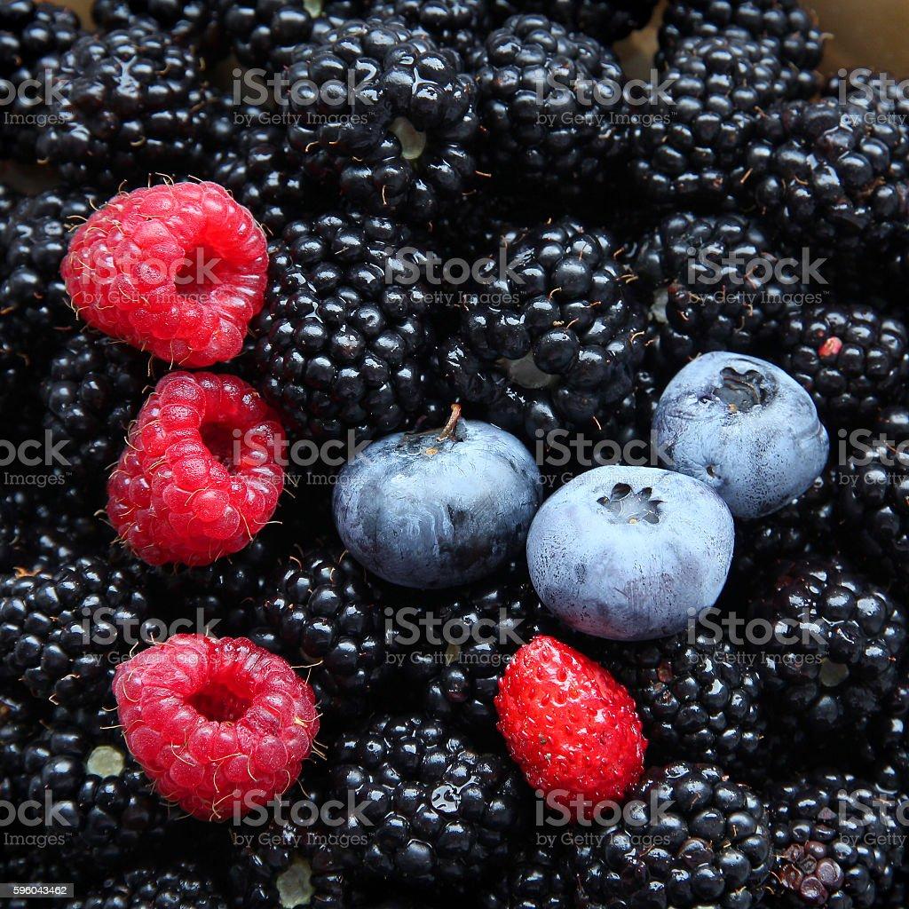 Fresh berries. stock photo