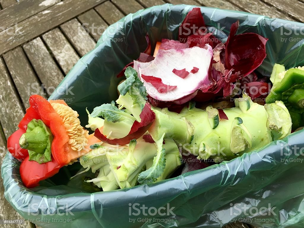 Fresh bio waste in a plastic bucket stock photo