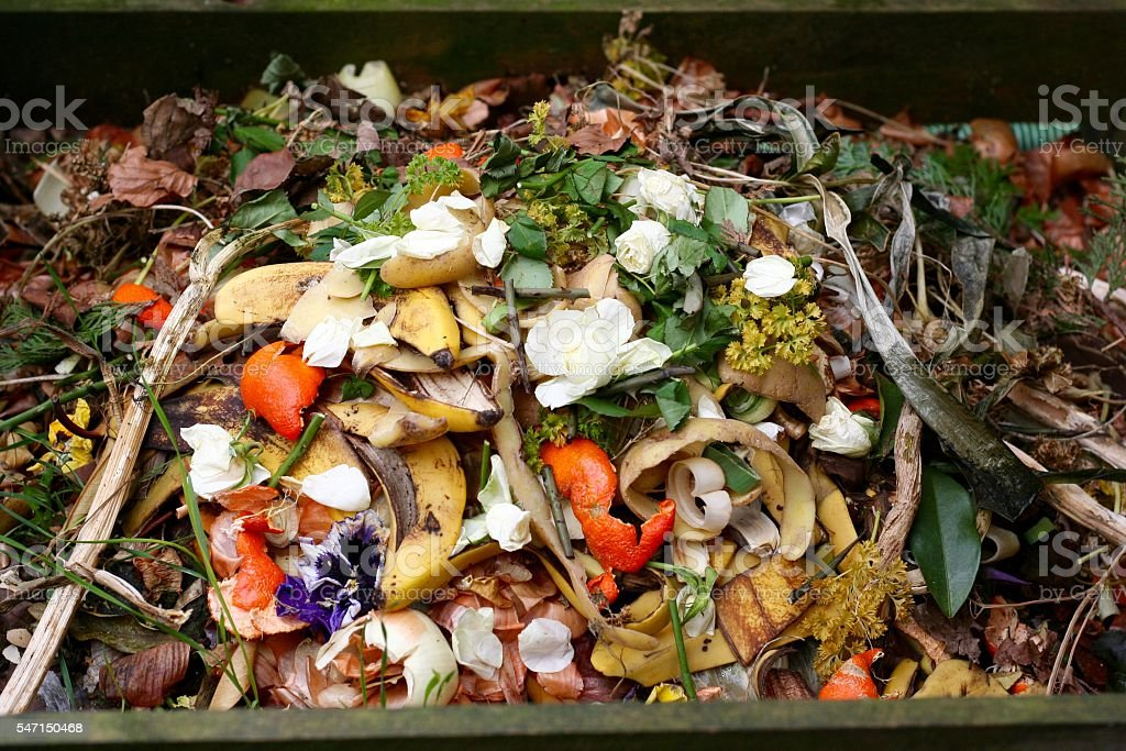 Fresh bio-waste and compost stock photo