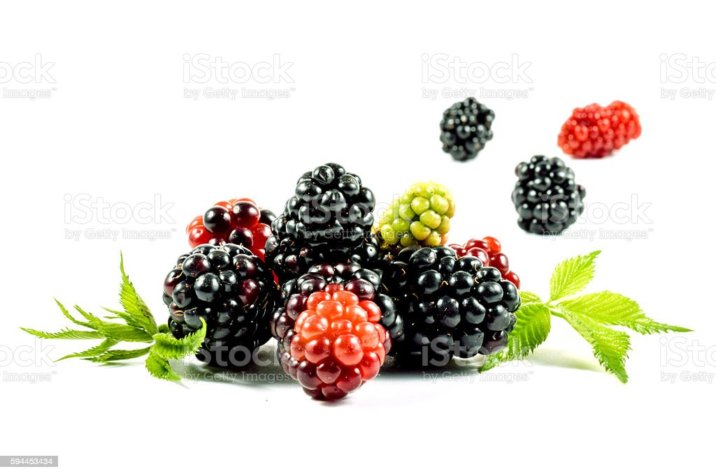 Fresh blackberries with leaves. Isolated on white background. stock photo