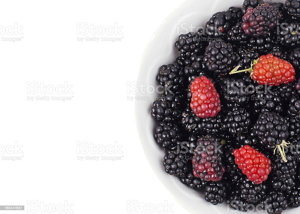 Fresh Blackberry In White Bowl Isolated On  Background royalty-free stock photo