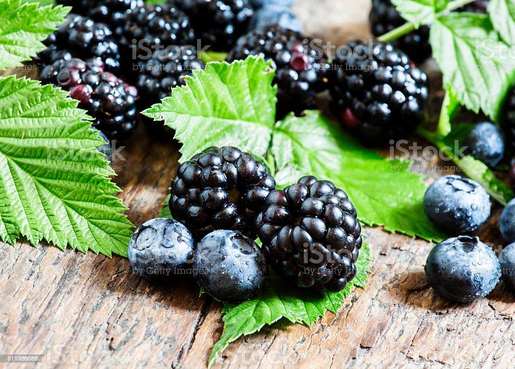 Fresh blueberries and blackberries stock photo