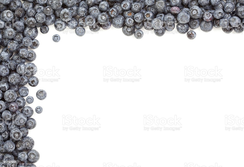 Fresh Blueberries Border one White royalty-free stock photo