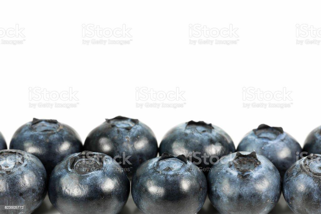 fresh blueberries isolated on white background stock photo