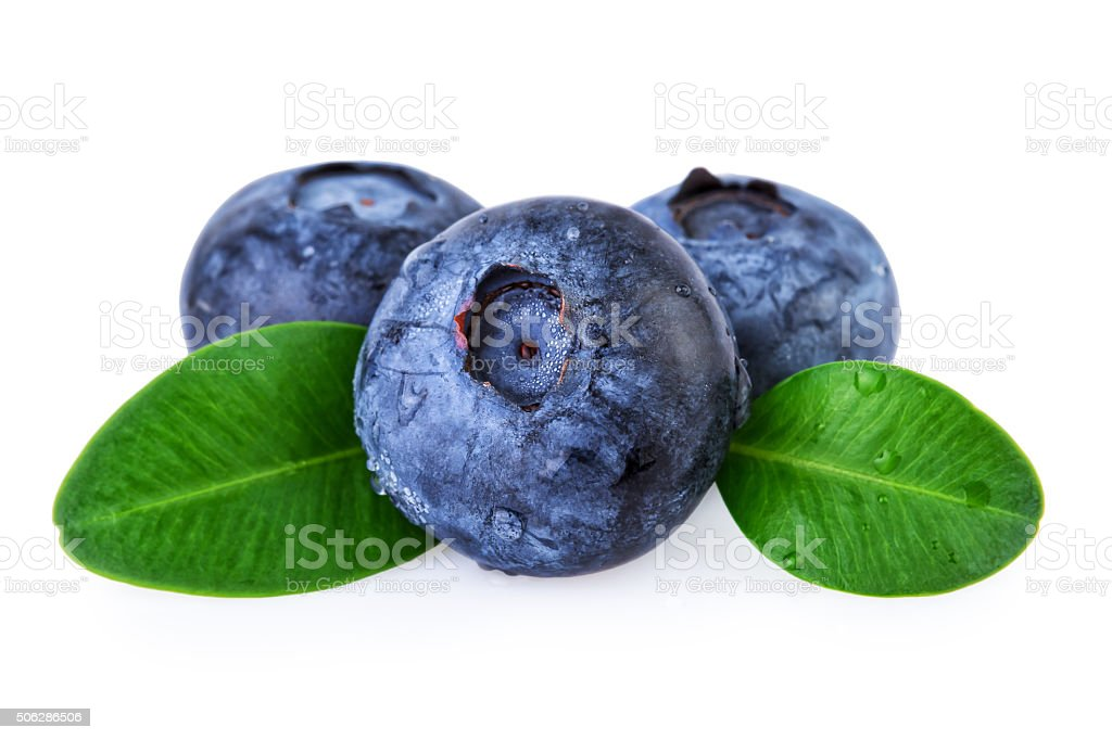 Fresh Blueberries with Water Droplets stock photo