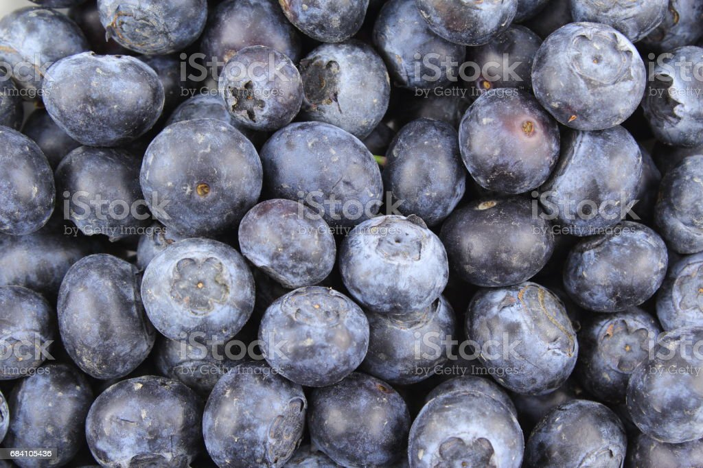 fresh blueberry fruits closeup food background texture stock photo