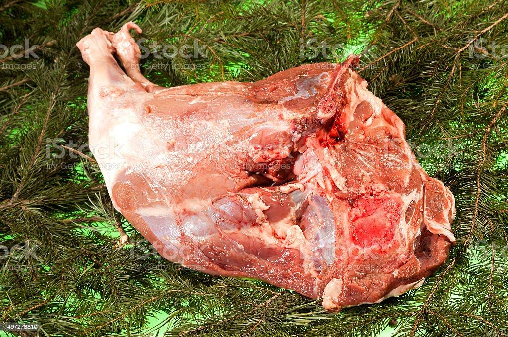 Fresh Boars Rump stock photo