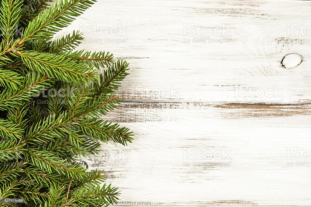 Fresh branch of spruce - christmas tree on wooden table stock photo