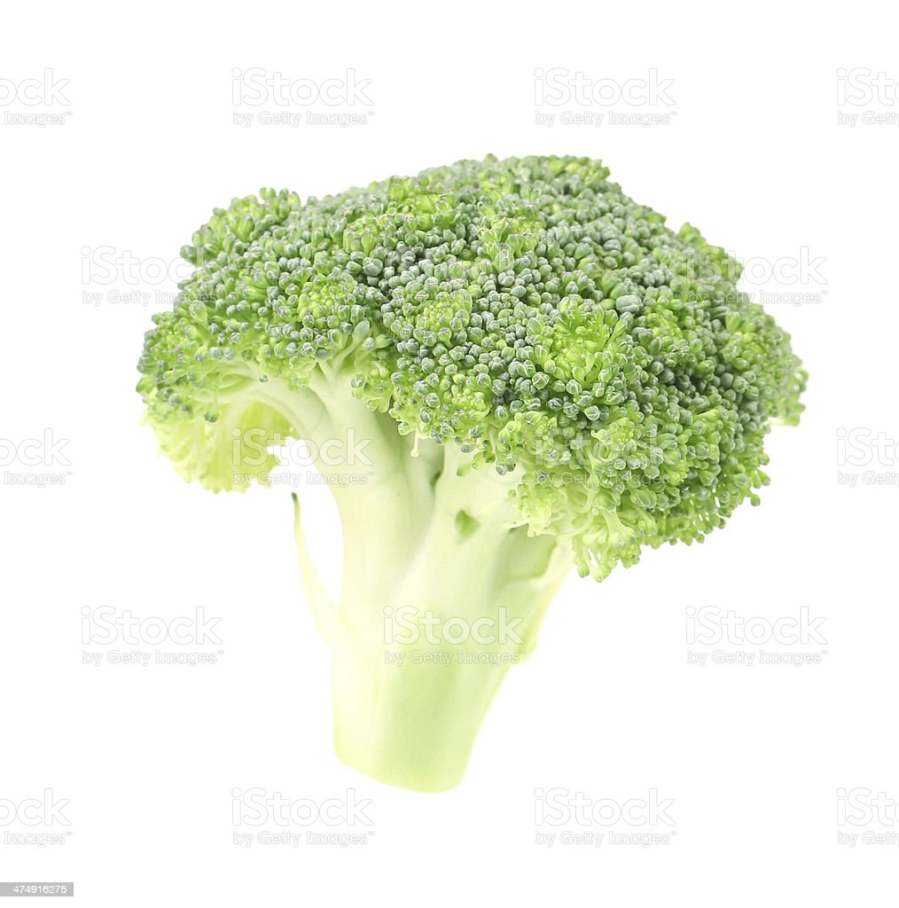 Fresh broccoli. stock photo