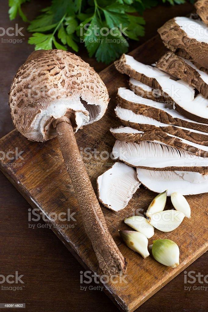 Fresh brown mushrooms ( Macrolepiota procera ) royalty-free stock photo