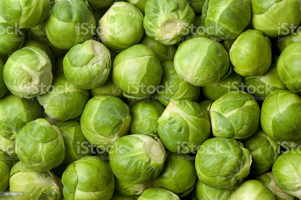 Fresh Brussel sprouts royalty-free stock photo