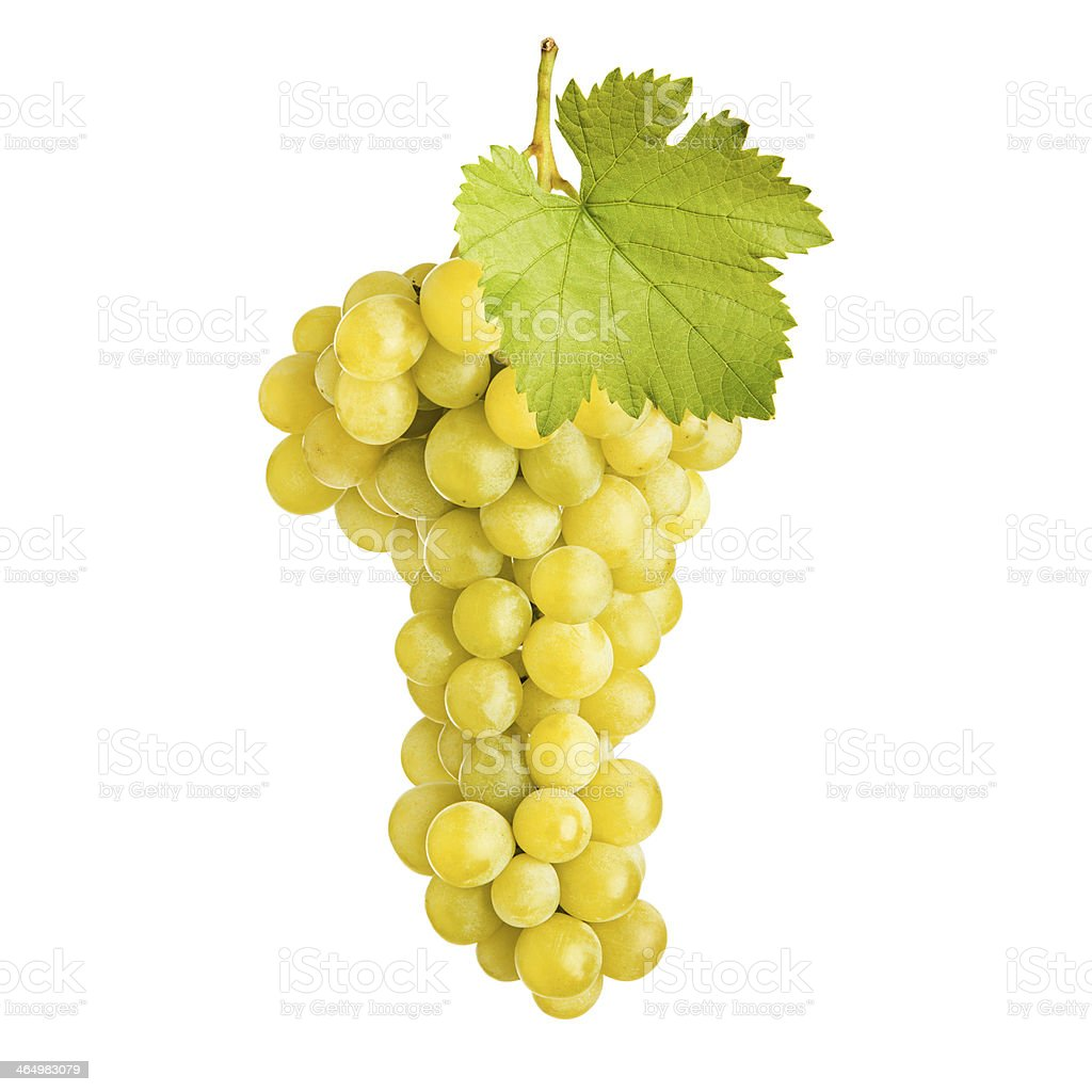 Fresh bunch of grapes white wine royalty-free stock photo