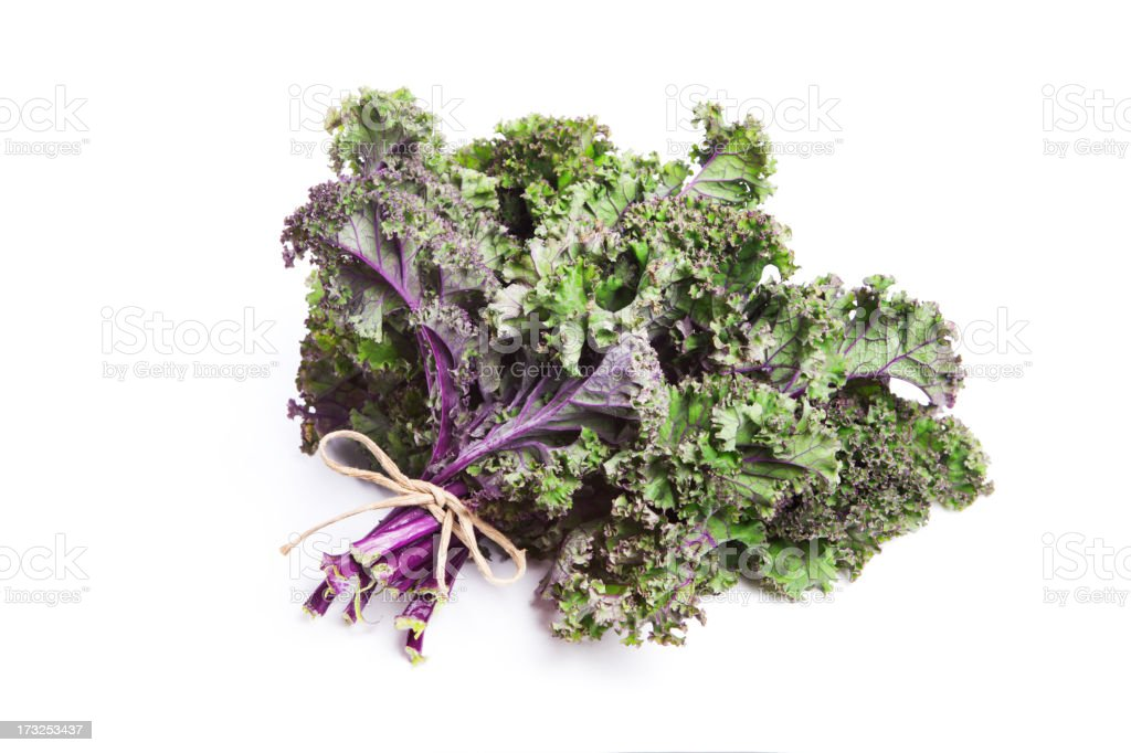 Fresh bunch of purple kale tied together stock photo