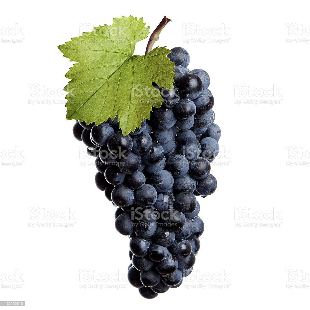 Fresh bunch of red wine royalty-free stock photo
