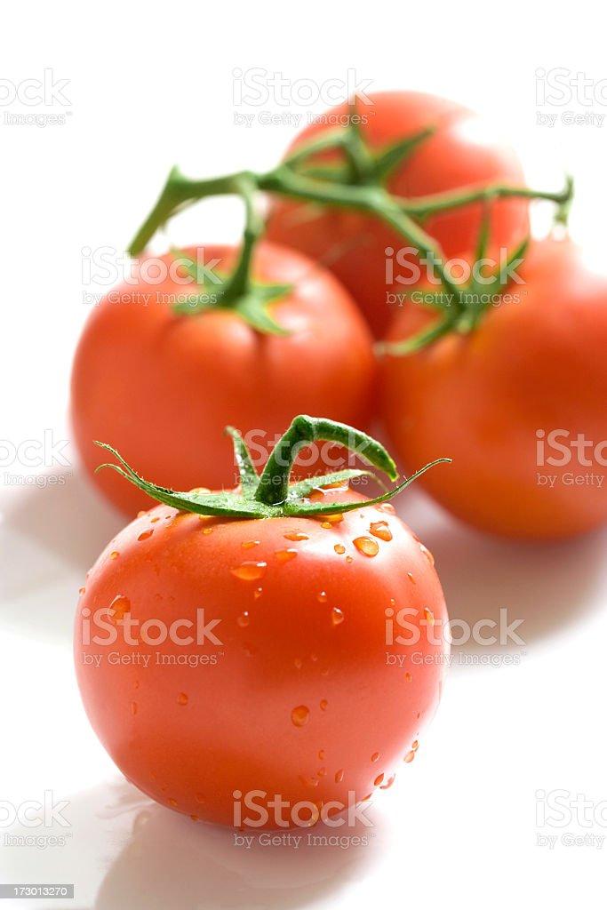Fresh Bunch of Tomatoes. stock photo