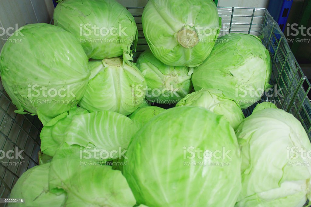 Fresh cabbage at farmers market, closeup stock photo