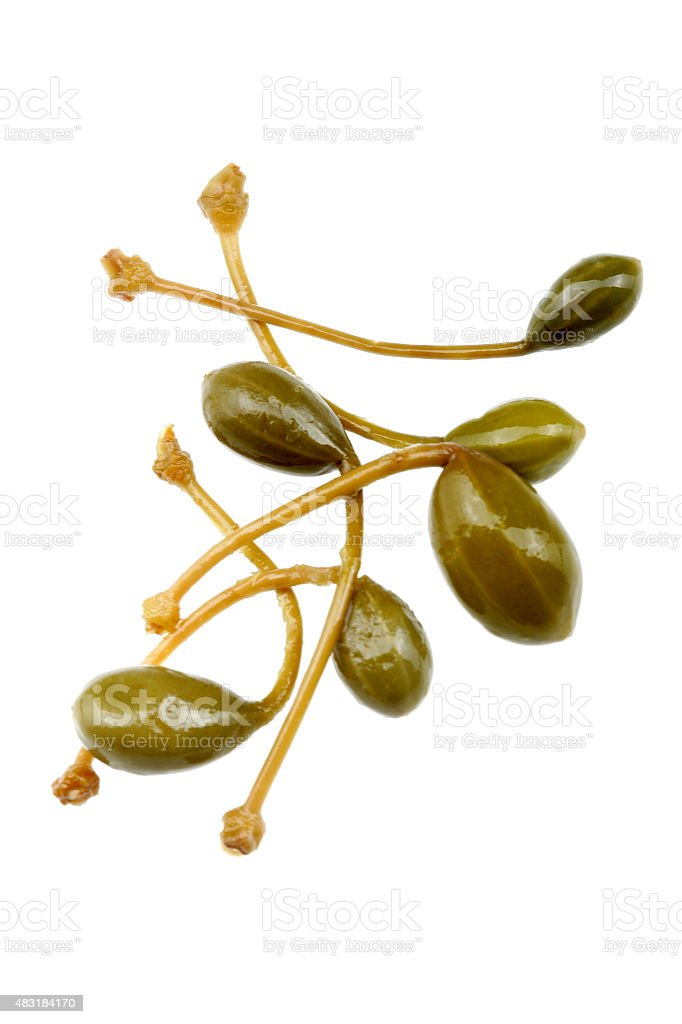 Fresh Capers Against a White Background stock photo