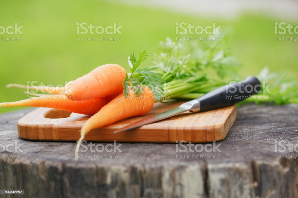 fresh carrots bunch on rustic wooden background stock photo