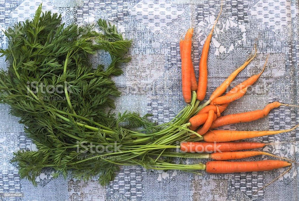 Fresh carrots on plain background stock photo